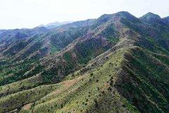 内蒙古大青山国家级自然保护区五道沟矿山环境